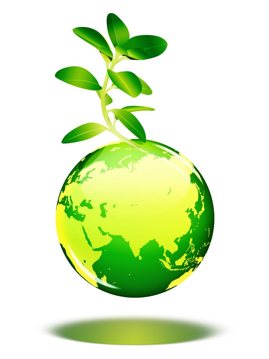 Why You Should Consider Switching To Green Products